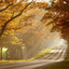 Color Wallpapers - 54364